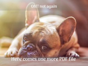 PDFs doesn't help you make interactive sales proposal