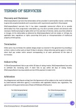 Website Design Proposal Template - Terms of Services