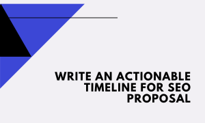 timeline section for seo proposal